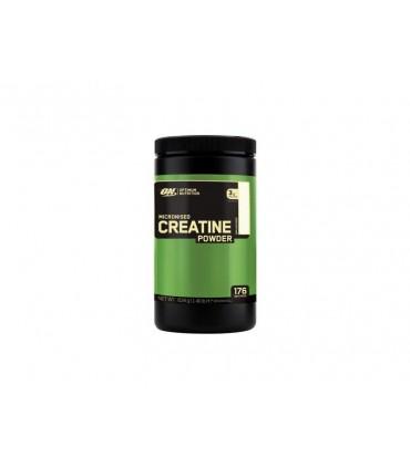 CREATINE POWDER 600 G (ON)