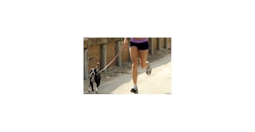 Los beneficios de hacer running con perros
